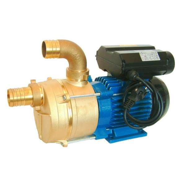 Samousisna dvosmerna monofazna pumpa EEM